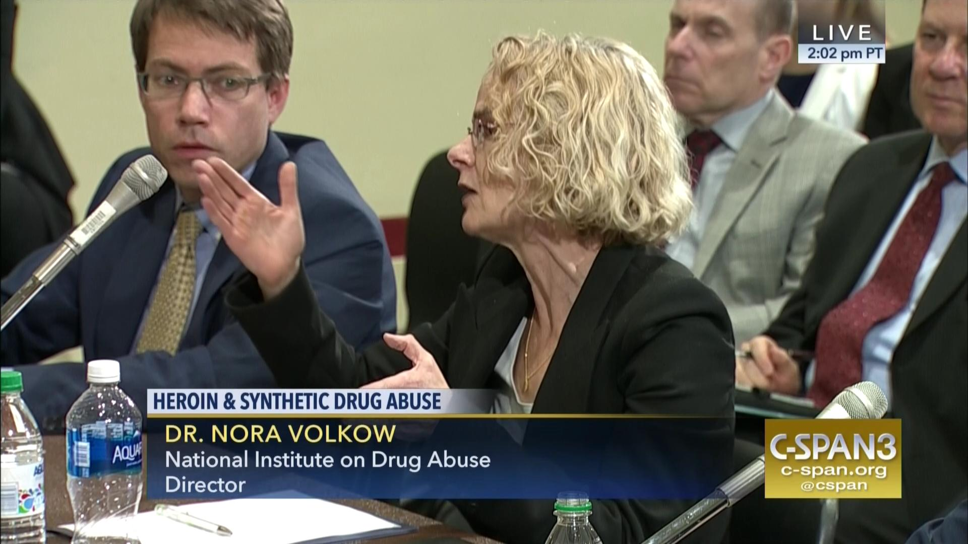 Rep Norcross Heroin Synthetic Drug Abuse Hearing C Span