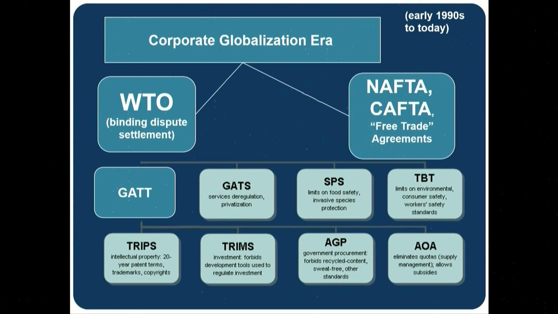 Lori Wallach Trade Agreements User Clip C Span